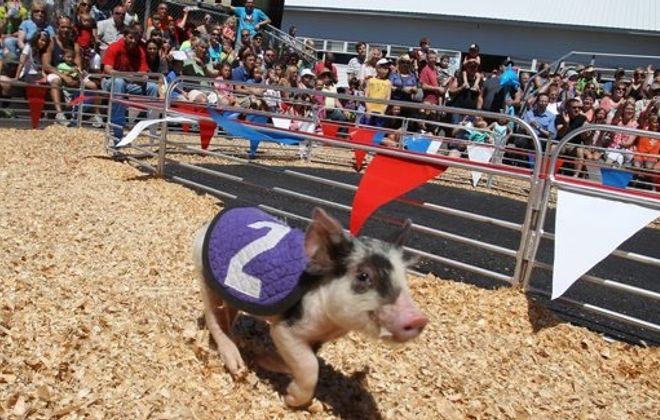 The entertaining Erie County Fair advanced to the Summer Madness final against Justin Timberlake. Cast your vote! (James P. McCoy/ Buffalo News file photo)