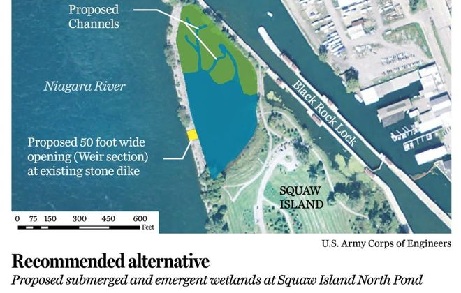 Buffalo River dredge graphic  Proposed submerged and emergent wetlands at Squaw Island North Pond