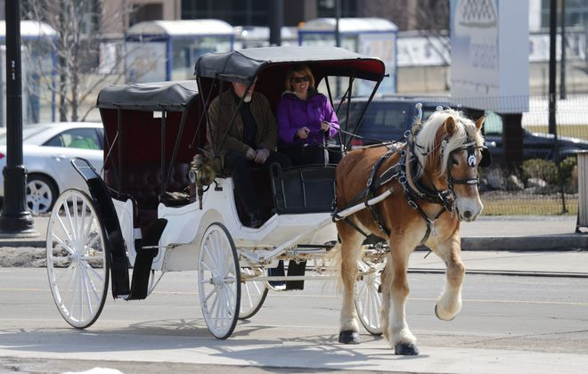 Eden Carriage owner Brooke Stanley and driver Erika Abbondanzieri take a spin in a carriage pulled by Belgian draft horse Zsa Zsa at Canalside on Friday. The rides will be offered on Fridays, Saturdays and Sundays through April. After April, times and costs may change.