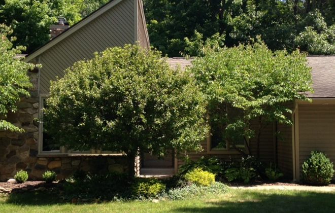 East Amherst neighbors recall fateful sounds on morning of murder-suicide