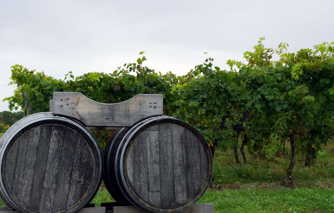 Wine 101: The smart way to tour Niagara's wine country