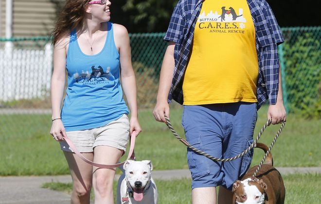 After Margeaux Hallman and her husband Jesse adopted Pearly, they decided they had room for Moo, a foster dog from Buffalo CARES. Both Hallman dogs are pit bulls, the most prevalent breed in shelters and rescues.