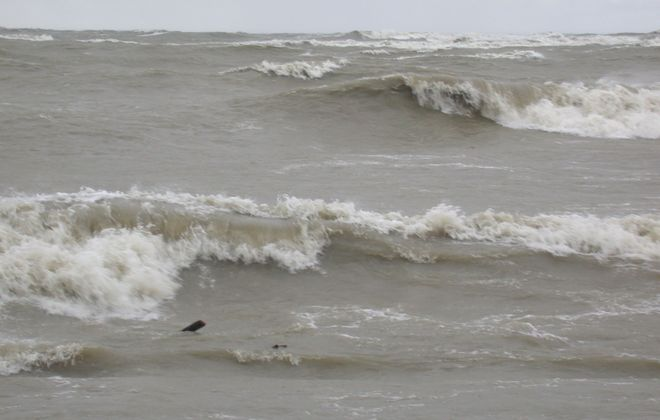 Swimming is not advised in Lake Erie today. (NOAA Great Lakes Environmental Research Laboratory file image)