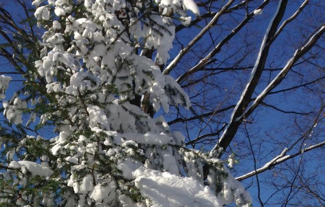 The morning after the first blast from the Wall of Snow brought a sky that appeared to be the bluest of blues. (T.J. Pignataro)