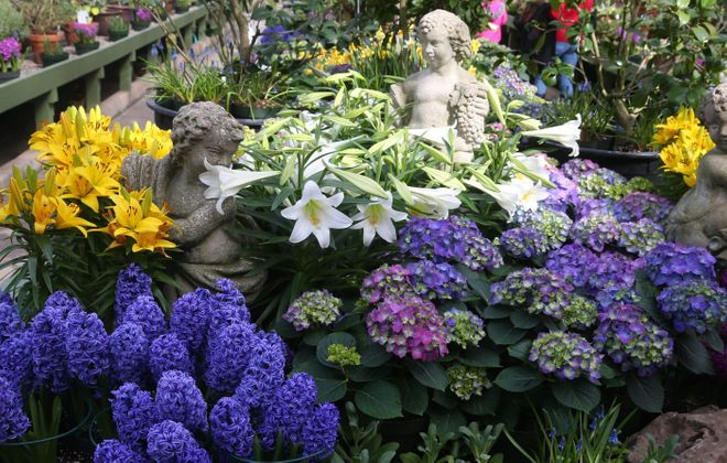 Take time with mom to stop and smell the flowers at the Buffalo and Erie County Botanical Gardens. (John Hickey/Buffalo News file photo)