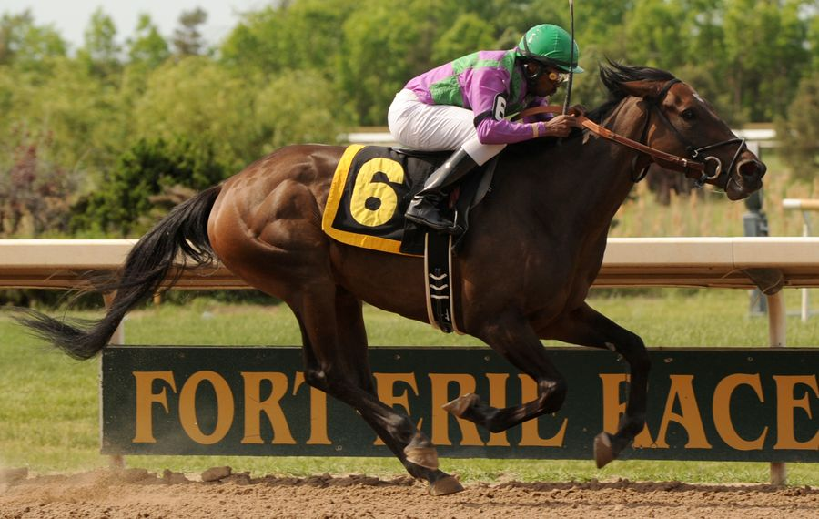 An investor group led by Carl and William Paladino have put the Fort Erie Race Track and surrounding land up for sale. (Photo courtesy of Michael Burns)