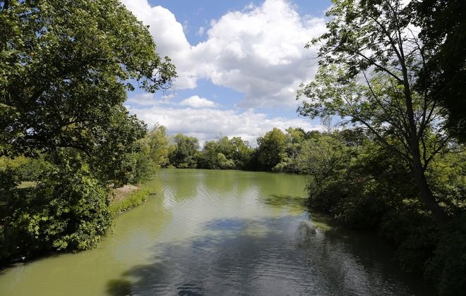 Hot summer weather leads to algae bloom warning at Hyde Park Lake