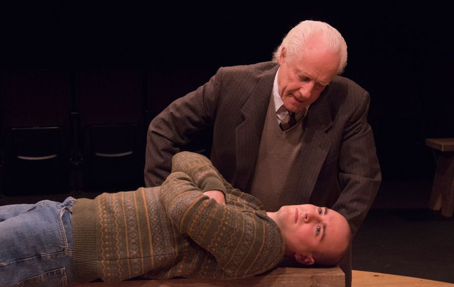 """Vincent O'Neill (standing) and P.J. Tighe star in the Irish Classical Theatre Company's production of """"Equus."""""""