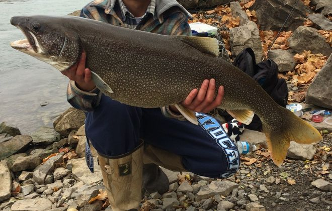 Collin Kazmierczak landed this 40-inch, 25- pound lake trout in the Lower Niagara.