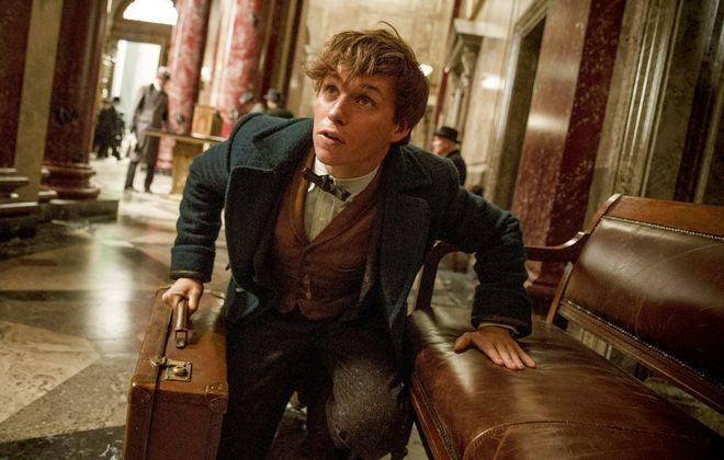 """Eddie Redmayne in """"Fantastic Beasts and Where to Find Them."""" (Jaap Buitendijk, Warner Bros. Pictures)"""