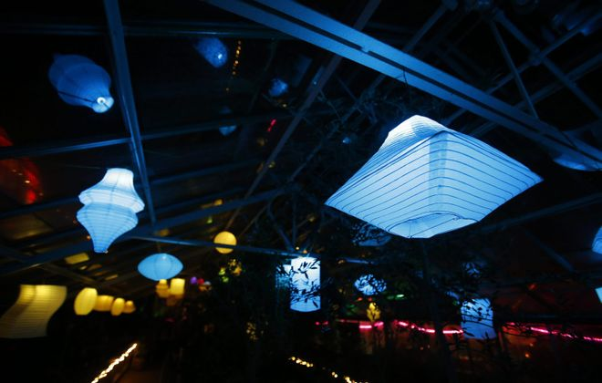 The annual Lumagination launches with a special event at the Buffalo and Erie County Botanical Gardens.  (Mark Mulville/Buffalo News)