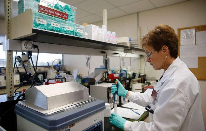 Barbara Flick works in a lab at ONY Inc., which makes a drug to help premature infants breathe, at Baird Research Park.(Derek Gee/Buffalo News)