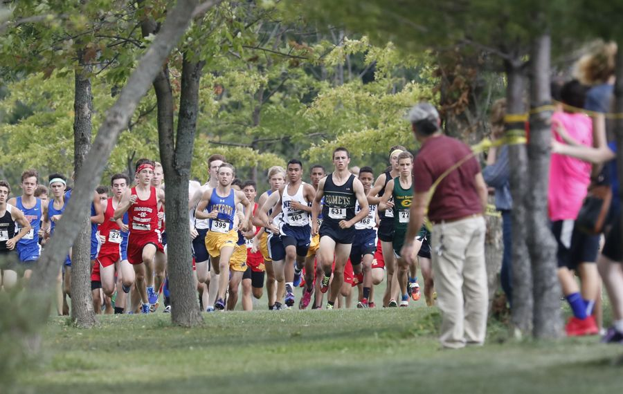 Runners compete in the large school boys cross country meet at Sunshine Park in West Seneca on Saturday, Sept. 10, 2016. (Harry Scull Jr./Buffalo News)