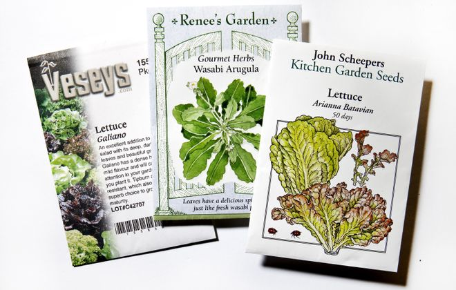 Williamsville Garden Club members will meet this week to share gardening catalogs for ordering seeds and plants for their gardens. Photo by Bill Hogan/Chicago Tribune/TNS
