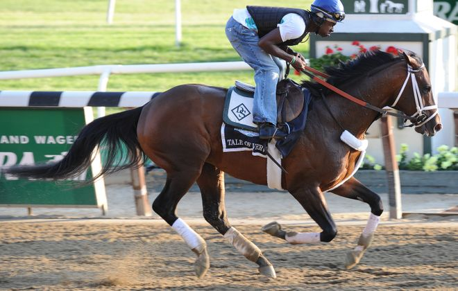 Madefromlucky races in the Poseidon on the Pegasus undercard. Photo Credit: Susie Raisher/NYRA