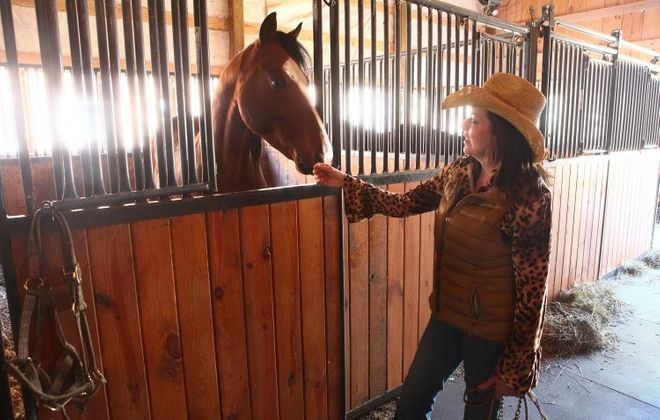 Lawyer sues Hoskins for unpaid legal bills in horse cruelty case