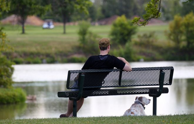 A man and his dog rest during a walk at Hyde Park in Niagara Falls, one of four city parks where diseased ash trees are to be replaced. (Mark Mulville/Buffalo News file photo)