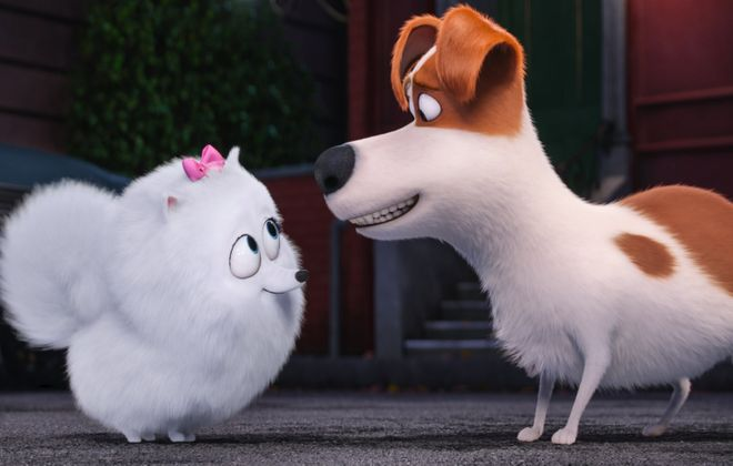 """Grab the kids for a free screening of """"The Secret Lives of Pets."""" (Photo by Universal Pictures and Illumination Entertainment)"""