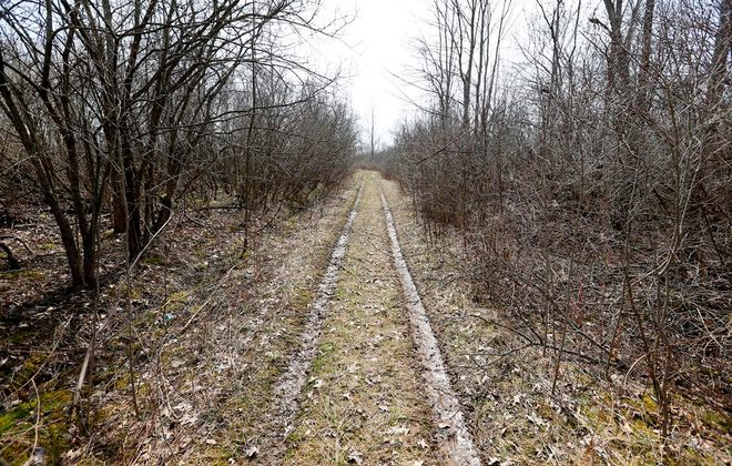 A plan for a trail system through town-owned woods on Grand Island has gotten the thumbs up twice from the Niagara River Greenway Commission. A portion of the land is near the Grand Island schools' athletic fields. (Mark Mulville/Buffalo News)