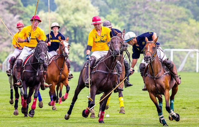 The Knox Memorial Cup Polo Tournament.