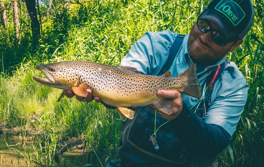Drew Nisbet of the Orvis Buffalo shop shows off this beauty Wiscoy Creek brown trout.