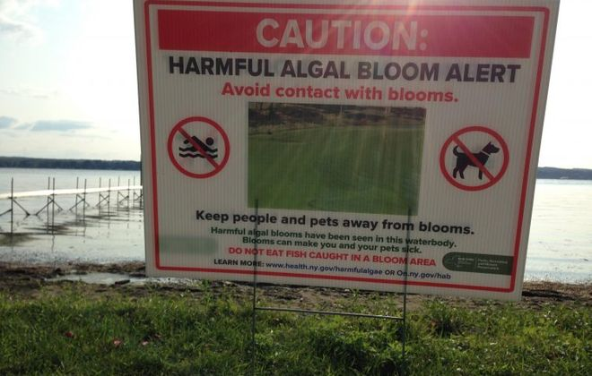 Signs posted at Midway State Park warn visitors about getting too close to the shoreline of Chautauqua Lake (T.J. Pignataro/Buffalo News)