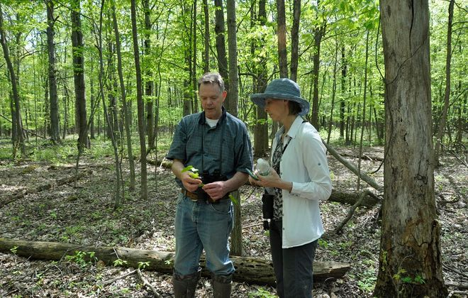 Pat McGlew (l) land development director for the Western New York Land Conservancy and former board president Kathy Lasher (r) survey the Assumption Forest on Grand Island