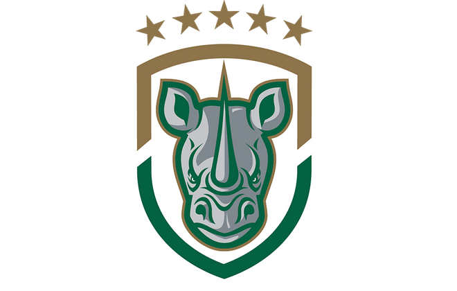 The Rochester Rhinos have been approved by the United Soccer League to take part in USL Division 3, likely by 2020. (via Rhinos)
