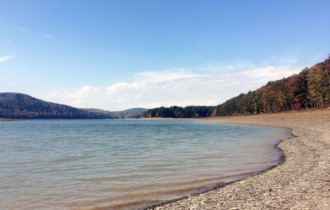 Going wild at Allegheny: Pennsylvania's only national forest