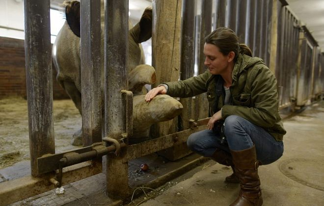 """Kate Brooks, who grew up in Western New York, directed the film """"The Last Animals,"""" which tells the story of the fight to save endangered species such as this white rhino, named Nabire, who has since died. (Copyright: """"The Last Animals"""")"""