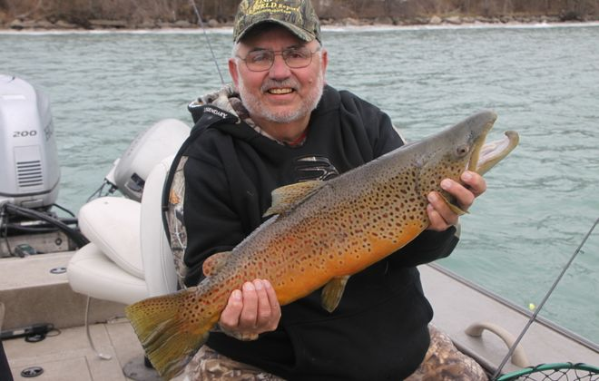 Rick Henniger, editor of Ohio's Fish and Field Report, managed to reel in this colorful brown trout on a MagLip.