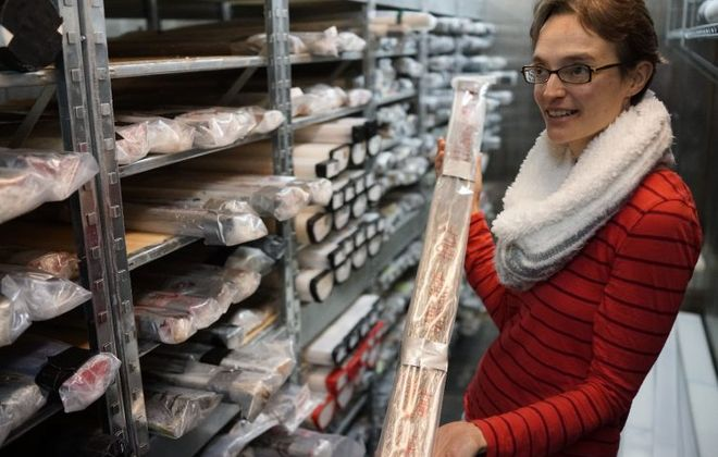 UB geologist and paleoclimatologist Elizabeth Thomas uses  mud core samples collected from area ponds and bogs to determine historical precipitation trends by analyzing the molecules of leaves in the sediment, Friday, Jan. 12, 2018. (Derek Gee/Buffalo News)
