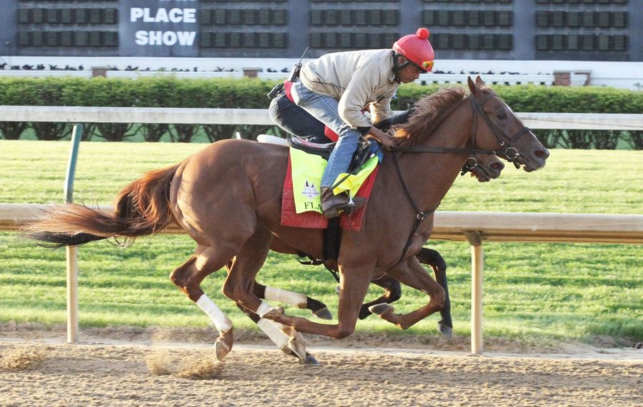 Kentucky Derby starter Flameaway is headed to the Prince of Wales Stakes at Fort Erie Race Track on July 24. Photo Credit: Coady Photo/Churchill Downs