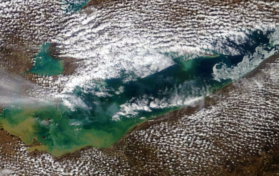 The NOAA MODIS image from Easter Sunday.
