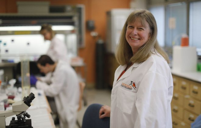 Kate Rittenhouse-Olson, president and CSO of For-Robin, which is developing a potential treatment for breast cancer, in the For-Robin lab on UB South Campus. (Derek Gee/Buffalo News)