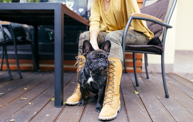 Pet-friendly patios for your next walk