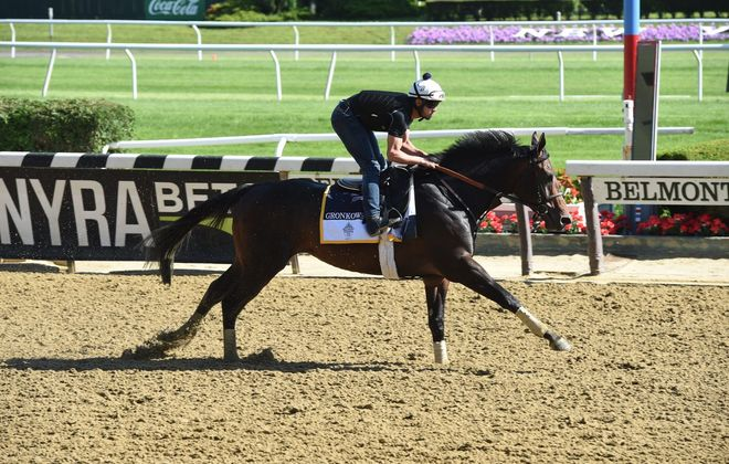 Gronkowski gallops over Belmont Park track on Wednesday morning. Photo Credit: NYRA/Zoe Metz