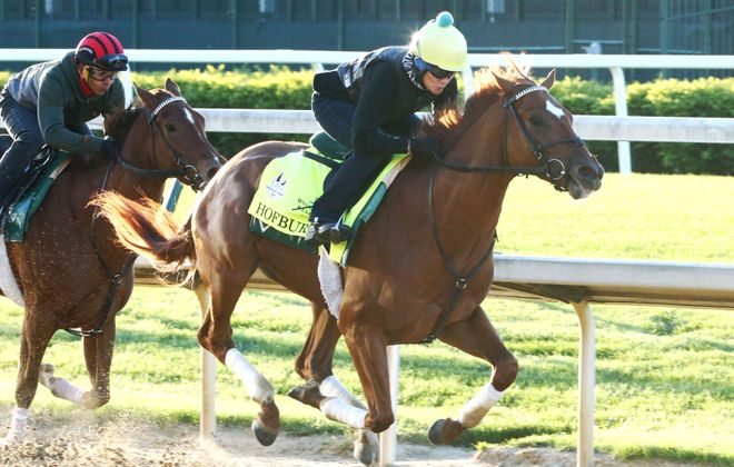 Hofburg is a top contender in next weekend's Belmont Stakes. Photo Credit: Churchill Downs/Coady Photography