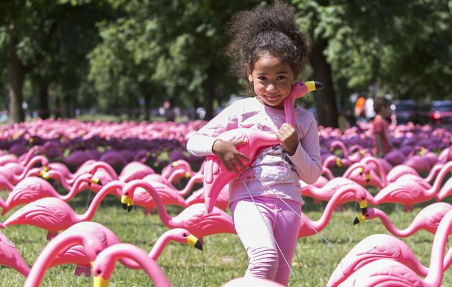 The Guinness World Records confirmed Buffalo set the record for the longest line of pink plastic flamingos on June 21, 2018. Here, Yui Caudle-Saito, 3, cuddles with her favorite flamingo. (Buffalo News file photo)