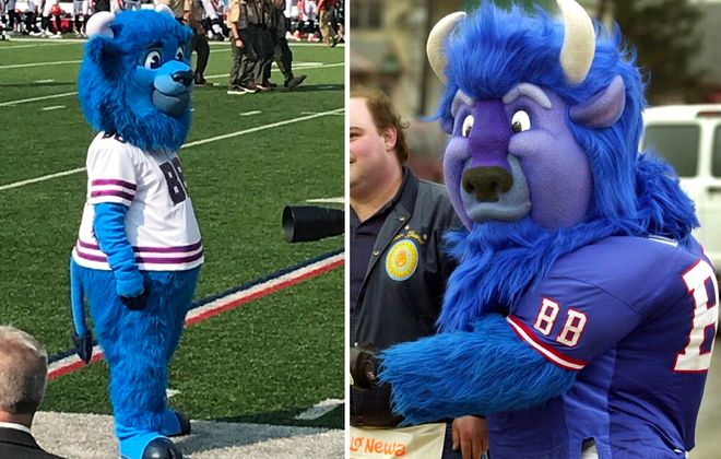 2018 Billy Buffalo, left, compared to the original Billy Buffalo, right. (Left: via @DuffyOnWCMF; right: Robert Kirkham/News file photo)