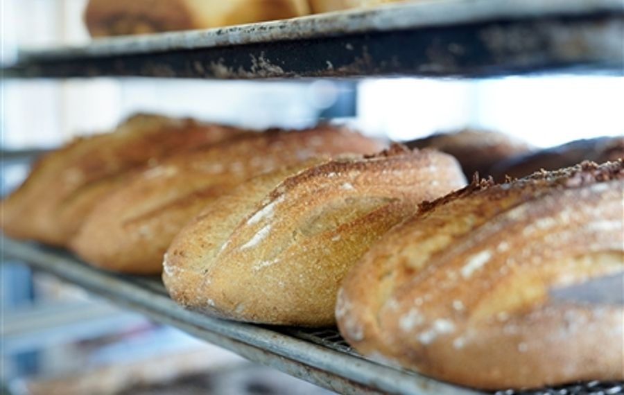 Baking West Side Sourdough with BreadHive