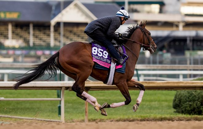 Newspaperofrecord (IRE), trained by Chad C. Brown, exercises in preparation for the Breeders' Cup Juvenile Fillies Turf  at Churchill Downs on October 30, 2018 in Louisville, Kentucky. (Photo Credit: Evers/Eclipse Sportswire/Breeders' Cup)