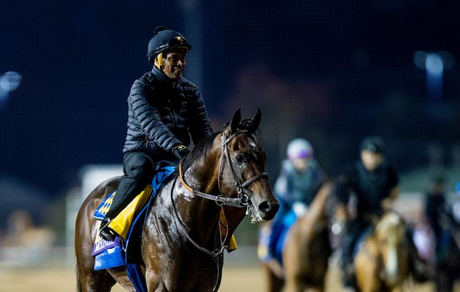 October 31, 2018 : .McKinzie, trained by Bob Baffert, exercises in preparation for the Breeders' Cup Classic at Churchill Downs on October 31, 2018 in Louisville, Kentucky. Photo Credit: Evers/Eclipse Sportswire/Breeders Cup