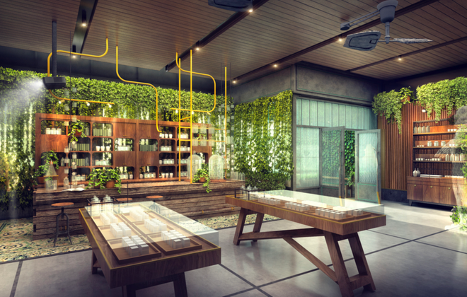 A rendering of The Botanist, a cannabis dispensary opening on Seneca Street Monday. (Contributed photo)