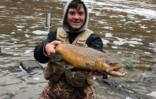 Ethan Bronschidle of Newfane was using fresh egg sacs that he tied up to take a mix of browns, steelhead and even some late salmon while fishing a favorite Niagara County tributary off Lake Ontario.