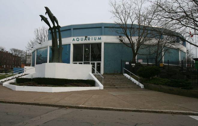 The Aquarium of Niagara is located at 701 Whirlpool St. in Niagara Falls. (Buffalo News file photo)