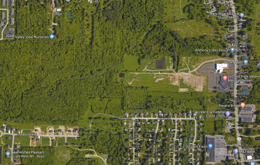 An overhead view of the area where a major development is planned for Orchard Park. (Google View)