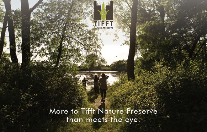 More to Tifft Nature Preserve than meets the eye