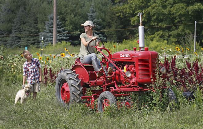 """Bringing people to Tioga Valley Farm, in West Falls, to pick up Community Supported Agriculture (CSA) farm shares is """"our favorite way to market vegetables,"""" says co-owner Beth Leipler, pictured last year aboard her 1948 Farmall tractor with son Dominic and Meesha, the family dog, nearby. (Robert Kirkham/News file photo)"""
