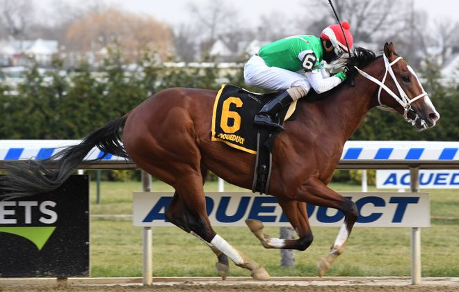 Remsen winner Maximus Mischief looks to the Holy Bull at Gulfstream for more Derby points. Photo Credit: Susie Raisher/NYRA